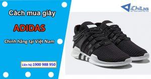 Cách mua giày Adidas Nhật chính hãng