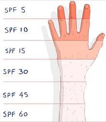 Chỉ số SPF